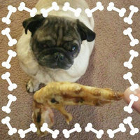 Best Bully Sticks Chicken Feet Dog Treats - 10 Pack uploaded by corey v.