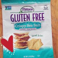 Milton's Craft Bakers Gluten Free Baked Crackers Crispy Sea Salt uploaded by Steve J.