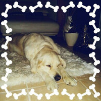 PetArmor for Dogs 44lbs 3ct uploaded by Renata A.