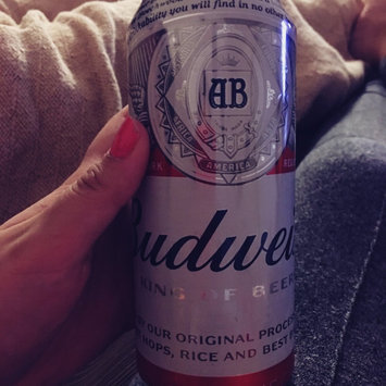 Photo of Budweiser Beer uploaded by Jessica M.