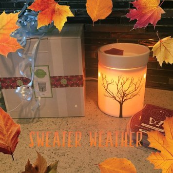 Scentsy Warmers uploaded by Itzitl P.
