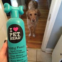 Pet Head Fears for Tears Tearless Shampoo uploaded by Lauren W.