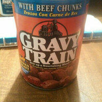 Gravy Train Dog Food Beef Flavor uploaded by Amy B.