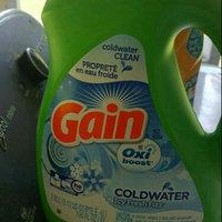 Gain With FreshLock Icy Fresh Fizz Liquid Detergent 52 Loads 100 Fl Oz uploaded by Kara M.