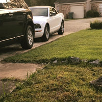 Mustang Monthly uploaded by Jessica H.