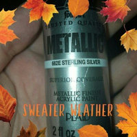 Plaid 132490 Folk Art Metallic Acrylic Paint 2 Ounces-Silver Sterling uploaded by Kylie H.