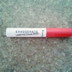 Rimmel London Exaggerate Undercover Shadow Primer uploaded by María Andreína L.