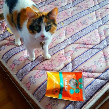 Photo of Iams™ Proactive Health™ Hairball Chicken Flavor Daily Treats Cat Food uploaded by Kersten B.