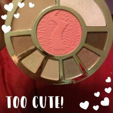 tarte Showstopper Clay Palette uploaded by Jennifer R.