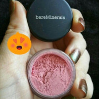 bareMinerals Eyecolor uploaded by Staci M.