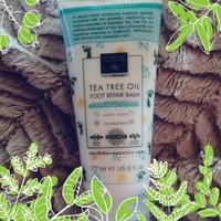 Earth Therapeutics Tea Tree Oil Foot Balm ~6 Oz uploaded by Cassandra C.