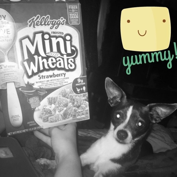 Kellogg's Frosted Mini-Wheats Strawberry Cereal uploaded by Karri L.