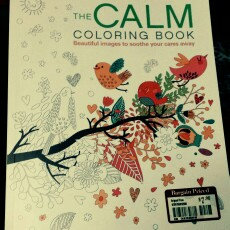 The Calm Coloring Book uploaded by Katy S.