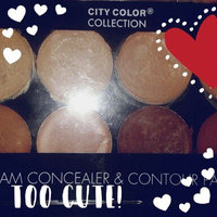 City Color Collection Photo Chic Concealer & Contour Palette uploaded by Krlita S.