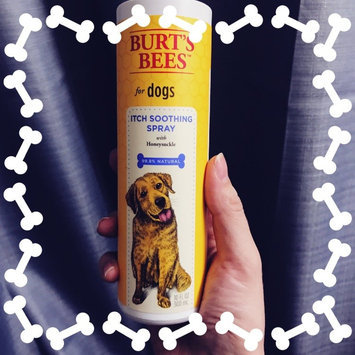 Burt's Bees Itch Soothing Spray for Dogs uploaded by Brittany D.