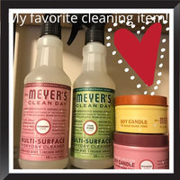 Mrs. Meyer's Clean Day Cranberry Multi-Surface Everyday Cleaner uploaded by Lxandra S.