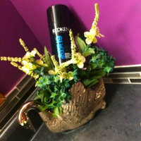 Redken Short Sculpt 19 Touchable Texturizing Gel uploaded by member-98a98eedf