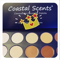 Coastal Scents Professional Camouflage Concealer Palette uploaded by Michelle D.