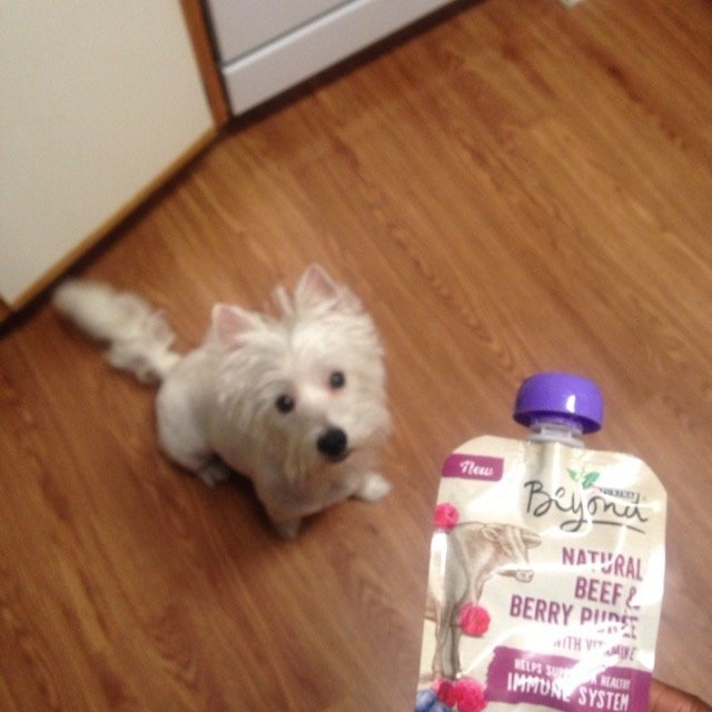 Purina Beyond Natural Beef & Berry Puree Meal Enhancement For Dogs 3.2 oz. Pouch uploaded by Emily B.