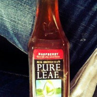 Lipton® Pure Leaf Real Brewed Raspberry Iced Tea uploaded by Rachael M.