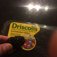 Driscoll's Fresh Blackberries 12-oz. uploaded by shilpa l.