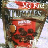 Demet's Turtles Minis Original uploaded by Sue Anna G.