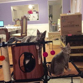 Photo of Sportpet Kitty City Multi Kitty City Starter Kit uploaded by Peyton S.