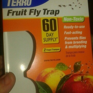 Victor 2500 Fruit Fly Trap uploaded by sara w.