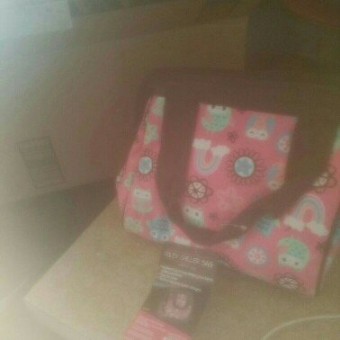 Fit & Fresh Nantucket Insulated Designer Lunch Bag with Ice Pack, Bright Paisley Pattern uploaded by Anita B.