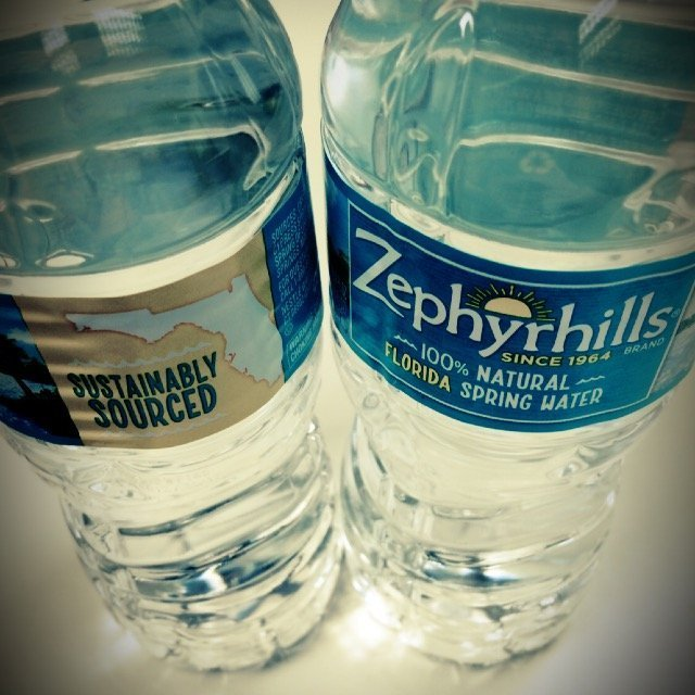 ZEPHYRHILLS Brand 100% Natural Spring Water, 16.9-ounce plastic bottles (Pack of 24) uploaded by Shay H.