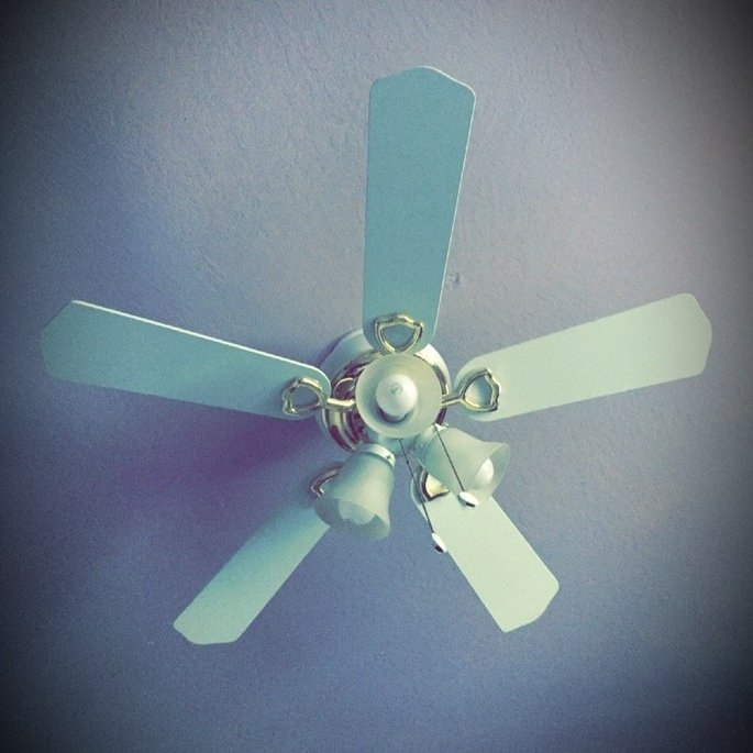 Hunter Fan Hudson Ceiling Fan 42