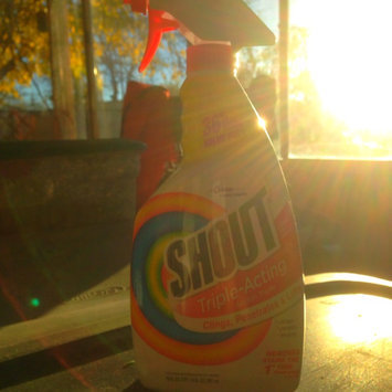 Photo of Shout® Advanced Action Gel uploaded by Jeremy H.