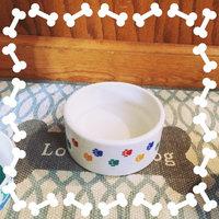 Ethical Paw Print Stoneware Dog Dish uploaded by Courtney K.