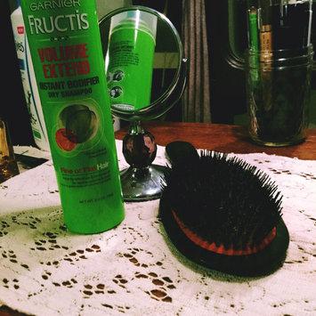 Photo of Garnier Fructis Volume Extend Instant Bodifier Dry Shampoo uploaded by Erin K.