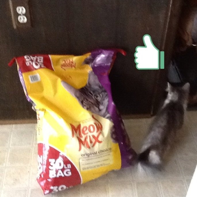 Meow Mix Original Choice Cat Food uploaded by Dawn R.