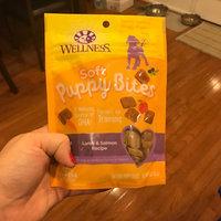 Wellness Complete Health Just For Puppy Lamb, Oatmeal & Salmon Treats uploaded by DeeDee F.