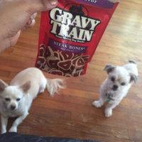 Gravy Train Steak Bones Beef Flavor Dog Snacks uploaded by Lakiya N.