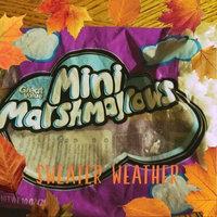 Great Value Mini Marshmallows, 10 oz uploaded by Jasmin M.