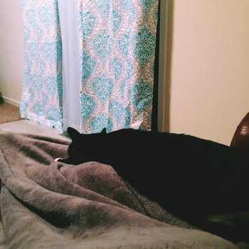 Whiskas WHISKASA TEMPTATIONSA Mega Cat Treat uploaded by Chelsey R.