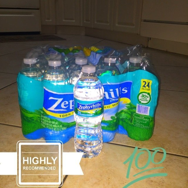 ZEPHYRHILLS Brand 100% Natural Spring Water, 16.9-ounce plastic bottles (Pack of 24) uploaded by Emily N.