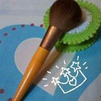 EcoTools Large Powder Brush uploaded by Glenis D.