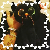 SHADOW - black cat med uploaded by Angely S.