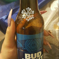 Bud Light Platinum Beer uploaded by Janinna H.