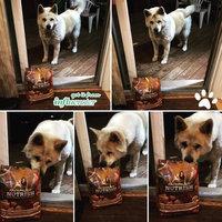 Rachael Ray™ Nutrish® Turkey, Brown Rice & Venison uploaded by Medina B.