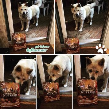 Photo of Rachael Ray™ Nutrish® Turkey, Brown Rice & Venison uploaded by Medina B.