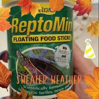 Tetra Usa Inc Tetra ReptoMin Turtle Food, 1.94 oz uploaded by Brooke I.