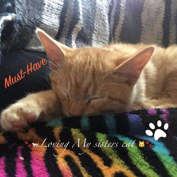 Photo of ASPCA uploaded by Vicky S.