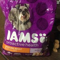 Iams Proactive Health Mature Adult Dog Food uploaded by Charlene G.