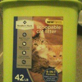 Member's Mark Scented Cat Litter (50 lb.) uploaded by Ashleigh C.