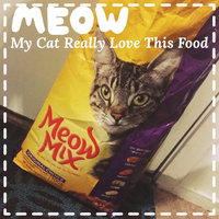 Meow Mix Original Choice Dry Cat Food, 10-Pound uploaded by Yury D.